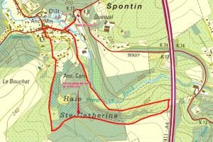 Spontin plan 12 CGW.jpg