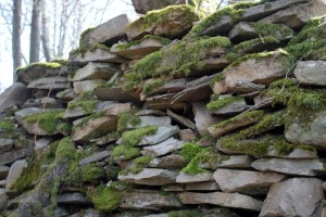 Chansin pierre seche françoise.jpg